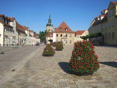 Ukwiecenie miasta: efektownie i efektywnie | Inspirowani Naturą | how to put flower towers terra into the public space?