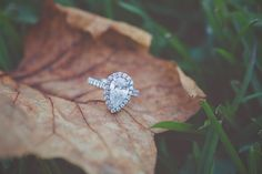 Charleston Plantation engagement portraits  |  Engagement ring on a leaf | @billiejojeremy  #Charlestonplantation #diamond #ring #engagement #engaged #nature #southernbride #shesaidyes #charlestonphotographers #authentic #unique #husbandandwife #getoutside