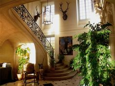 Eye For Design: Decorating With Deer Mounts For A French Chateau Look