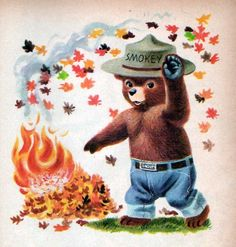 Forest fires are the cutest!
