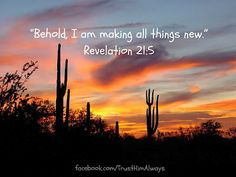 Behold I am making all things new. ~ Revelation 21:5