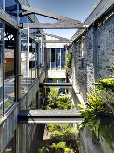 Lilyfield Warehouse, Virginia Kerridge Architect