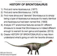 thedinosaurshow:Still confused about Brontosaurus? You're not alone. Here's an overly simplified (yet totally accurate) breakdown!