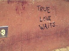 True love waits... knowing what you want and waiting for that moment to happen to be with the one you love is true love...