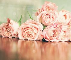 ♥  amo las rosas rosas