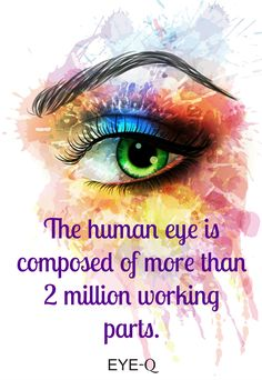 The human eye is composed of more than 2 million working parts.