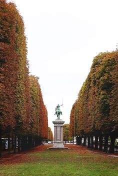 Paris in the fall #paris #wanderlust