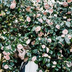 lost in the flowers