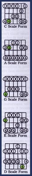 Learning Guitar: Pentatonic Scales and Lead Patterns Caged This is how to think about a guitar neck u fuqrs. Guitar Chords And Scales, Jazz Guitar Chords, Music Theory Guitar, Music Guitar, Playing Guitar, Learning Guitar, Guitar Room, Guitar Strings, Ukulele