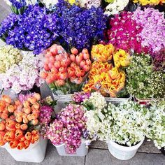 Beautiful and colourful flower market.