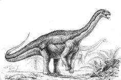 Jurassic Park, Habitats, Moose Art, Animals, Animales, Animaux, Animal, Animais