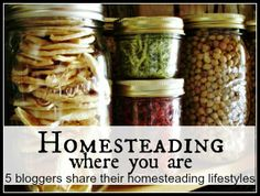 """Homesteading Where You Are Series - """"Failures/Successes/Goals"""" on Maple Hill 101 at http://mymaplehillfarm.blogspot.com/2014/02/homesteading-where-you-are-series_26.html"""