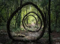 He Emerged From The Forest After A Year… But He Left Something Behind. - http://www.lifebuzz.com/wood-scupltures/