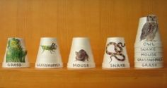 Love this idea for showing the food chain with stacking cups from Earth Mama via E is for Explore. Nice active visual for a basic concept of nature.