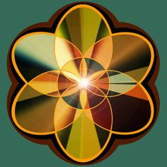 Geometric Flowers by Charline Lancel, via Behance
