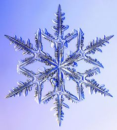 Snowflakes are ice-crystals, a particular form of water ice .Ice-crystals are appear as clear glass but more fragile. Pictures Of Christ, Snow Pictures, Snowflake Pictures, Theme Tattoo, Ice Crystals, Things Under A Microscope, Snow And Ice, Images Google, Winter Wonder