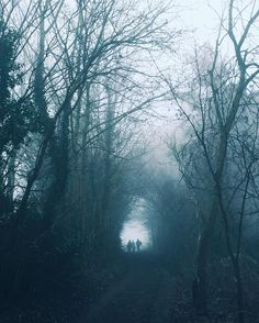 'The woods are lovely, dark and deep, But I have promises to keep, And miles to go before I sleep, And miles to go before I sleep.' - Robert Frost #mistyfoggymilkymoody