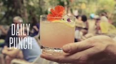 Curbside Cocktails: Miami, THE DAILY PUNCH