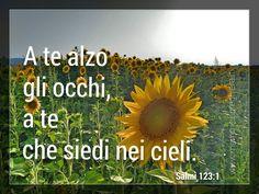 Salmo 123:1