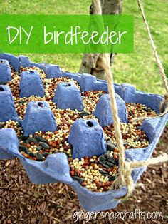 DIY birdfeeder from egg carton