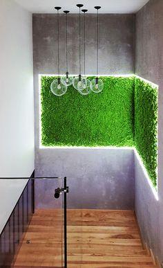 Panel z mchu Vertical Green Wall, Vertical Garden Design, Front Gate Design, Garage Design, Home Room Design, House Design, Balcony Railing Design, Fleur Design, Green Wall Art