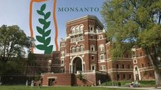 These Emails Show Monsanto Leaning on Professors to Fight the GMO PR War   Mother Jones