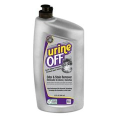 Eliminating Cat Urine Odor Best Urine Odor And Cat Urine