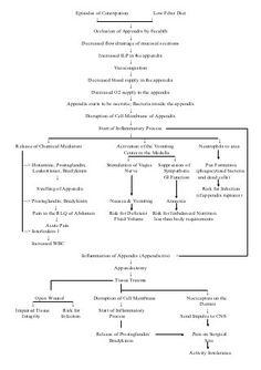 Appendicitis pathophysiology schematic diagram nursing pathophysiology of appendicitis ccuart Gallery