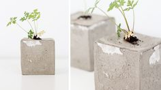 DIY mini concrete pot - My Dubio
