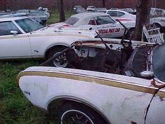 '69 Hurst/Olds and '69 Camaro Indy Pace Car boneyard.