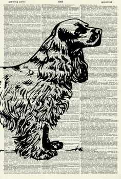 """COCKER SPANIEL ART PRINT - DOG ART PRINT - COCKER SPANIEL DOG ART PRINT - DOG LOVER'S GIFT - VINTAGE ART PRINT - Vintage Dictionary Art Print - WALL ART - Illustration - Picture - Book Print 463D. This striking illustration is printed on a page from a vintage dictionary. The page has a lovely old age colour to it which gives it a wonderful vintage feel. Size of print/page: Approx - 8.25"""" x 12.25"""" inches This art print would look great framed and would be suitable for any room in the…"""