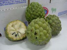Criativa e Curiosa - frutas brasileiras- FRUTA DO CONDE