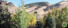 APPALOOSA BUNKHOUSE | LWR Living Waters Ranch