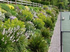 Garden design by Cornwall designer based in Falmouth _ Tennis Court Landscaping Steep Hillside Landscaping, Hillside Garden, Landscaping With Rocks, Front Yard Landscaping, Backyard Landscaping, Landscaping Ideas, Sloping Garden, Rockery Garden, Backyard Patio