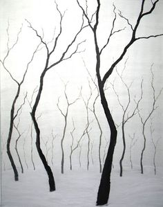 black and white #trees #photography