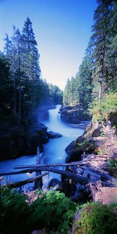 ゝ。Silver Falls Trail.。Mount Rainier National Park, Washington State.。