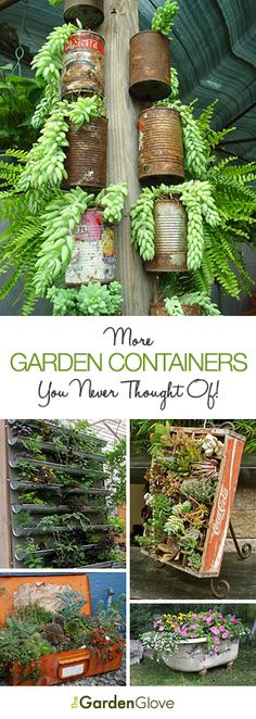 More Garden Containers You Never Thought Of • Tons of Tips & Ideas! Some are excellent vertical garden ideas.