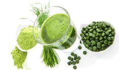 L'Unesco prédit que la spiruline sera l'aliment miracle du 21ème siècle ! Mais…