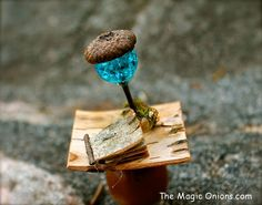 Acorn and bead lamp and fairy book made from bark - More enchanting photos of this magical FAIRY GARDEN on The Magic Onions Blog and FairyGardens.com