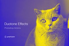 Duotone Photoshop Effects - Actions