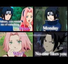 Haha - the dialogue itself is funny, not necessarily that it's Sakura. It's mean, but it is funny. (And I disagree with Sasuke)
