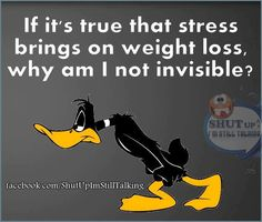 Art Pictures, Funny Pictures, Daffy Duck, Shut Up, Funny Cartoons, Cartoon Styles, Humor, My World, Cute Wallpapers