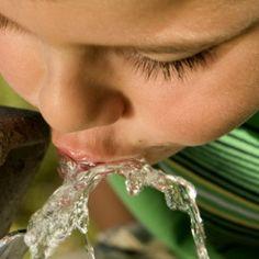 Вода является самым важным и незаменимым компонентом диеты. Давайте помнить о том, чтобы она занимала одну из главных позиций в нашем ежедневном питании.
