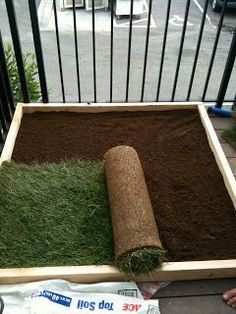 Great idea for #apartments especially for rainy days or when it's snowing. #DIY #Dog Potty for Patio.