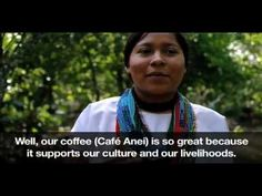 Interesting article on fair trade preserving culture. For some reason only the youtube video is showing with the link.  If you paste this into your browser you should get the full article.  http://www.triplepundit.com/2012/10/fair-trade-lives-preserve-culture-2/