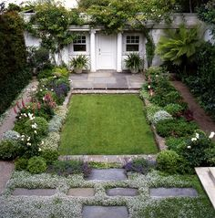 Hardscaping 101: Ground Covers to Plant Between Pavers: Gardenista