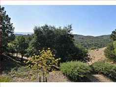 3/2  524,000 in San Carlos.  Find this home on Realtor.com