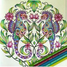 Johanna Basford Coloring Book, Caran D'ache, Colouring Techniques, Coloured Pencils, Color Pencil Art, Photo Instagram, Coloring Book Pages, Crayon, Color Inspiration