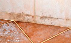 Come togliere la muffa dalle fughe delle mattonelle facilmente Tile Floor, Flooring, Texture, Baking Soda, Houses, Surface Finish, Tile Flooring, Hardwood Floor, Floor