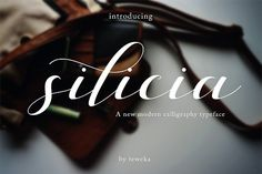 #Free #Downoad: Silica Script - A new fresh & modern script with a handmade calligraphy style, decorative characters https://creativemarket.com/Teweka/1080180-silicia-script?u=inspirationfeed